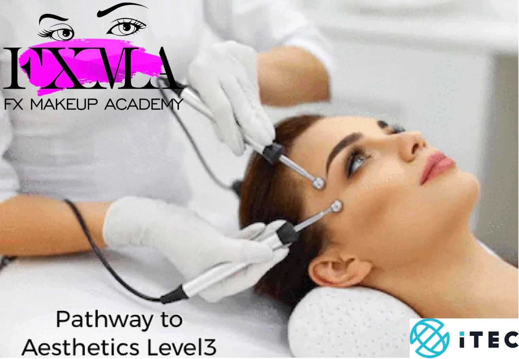 Pathway to Aesthetics Courses
